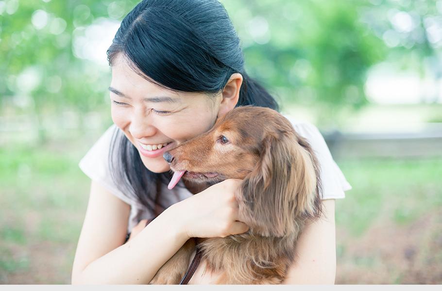 家族同様のペットだったからこそ真心込めてお手伝いさせて頂きます。ご希望のペット葬儀・火葬のプランをお選び下さい。